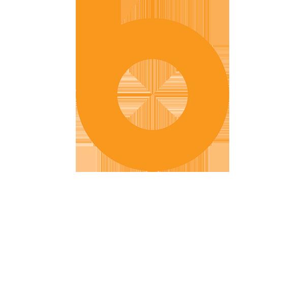 Boeck Seed Services logo
